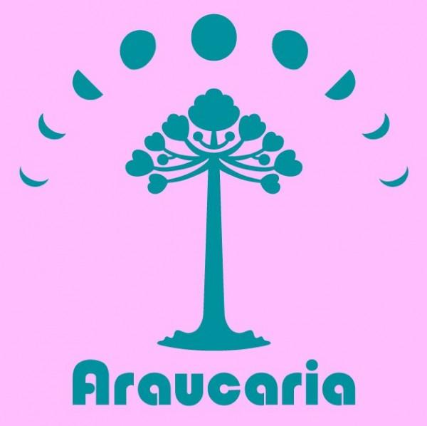 araucaria_広報画像