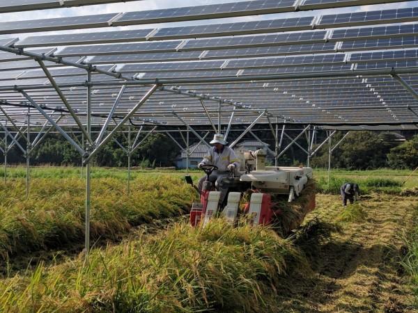 農業と自然エネルギーの融合