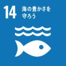 SDGs目標14. 海の豊かさを守ろう